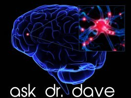 ask-dr-dave-dolce-diet