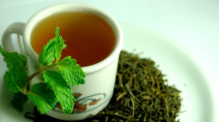 緑茶抽出物とトレーニングの影響