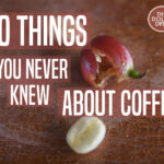 10 Coffee Facts You Never Knew