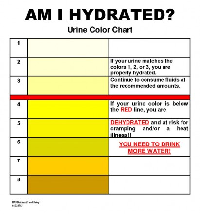 Use Your Urine Color To Help Determine Your Health Status  The