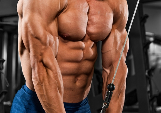 3 Moves To Train Those Triceps | The Dolce Diet